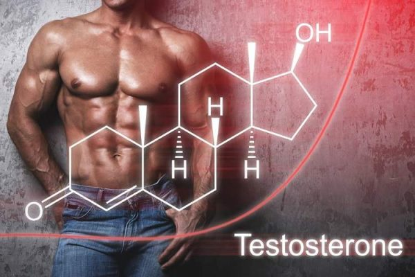 d aspartic acid benefits testosterone