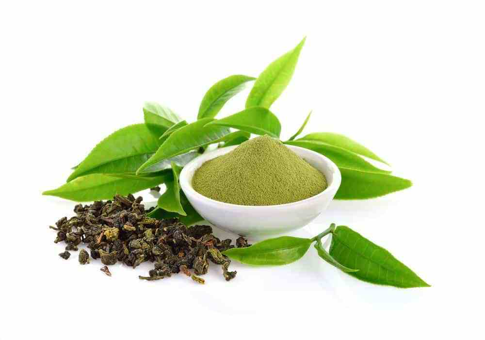 L-Theanine Benefits and Dosage